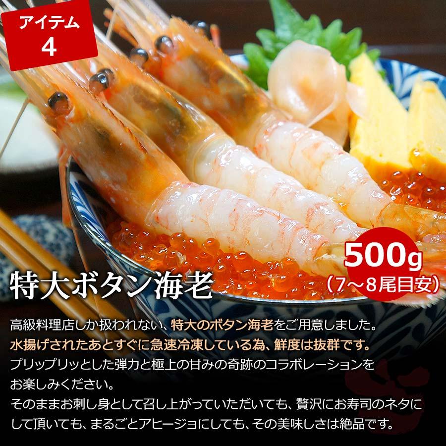 特大ボタン海老 500g(7~8尾目安)【送料無料・天狗キッチンオープン記念!豪華海鮮4種セット】