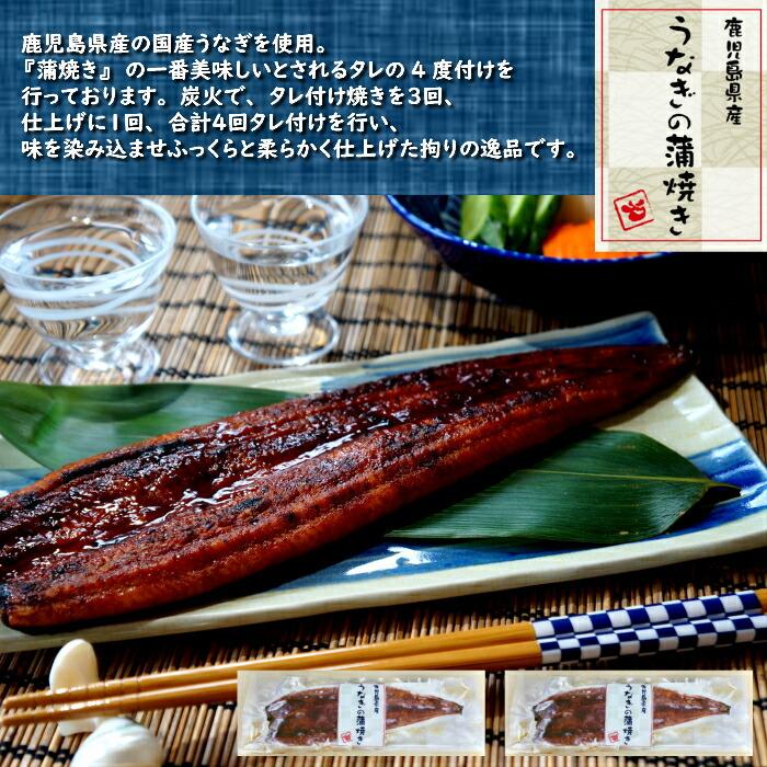 鹿児島県産 国産 うなぎの蒲焼き 2尾